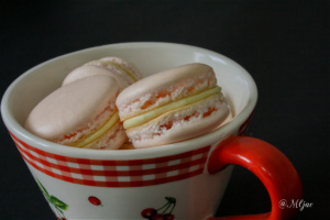 rozi_macarons